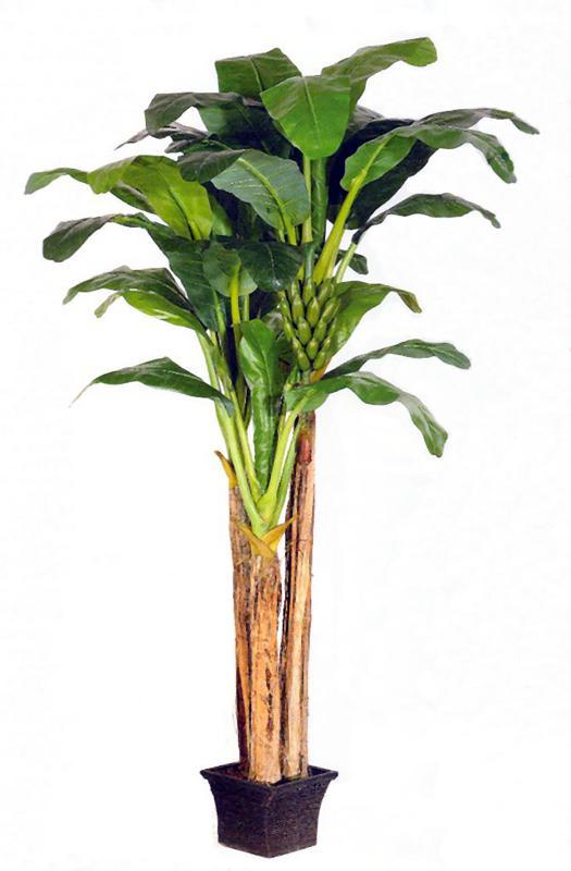 Banana Palm Set with Bananas 9.5ft