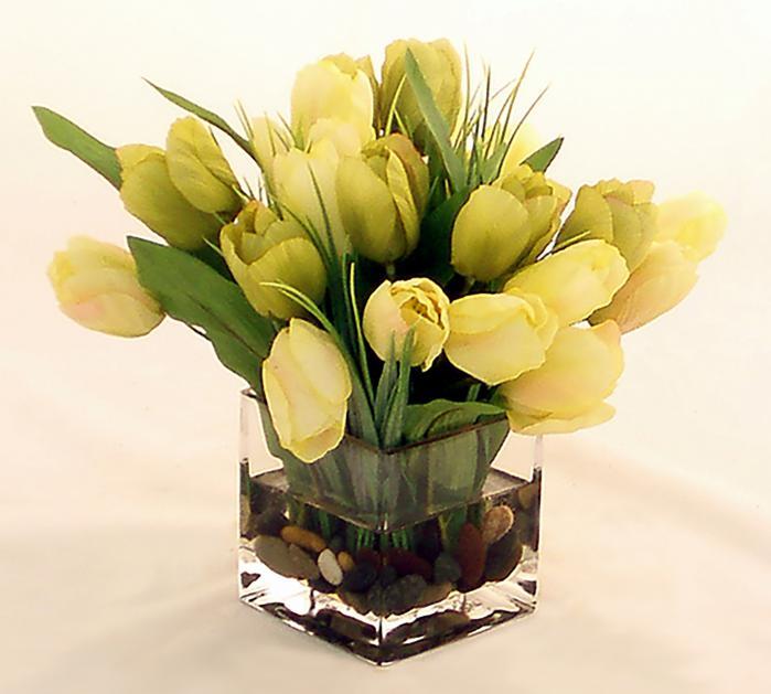 Rainbow Tulips in Cream/green