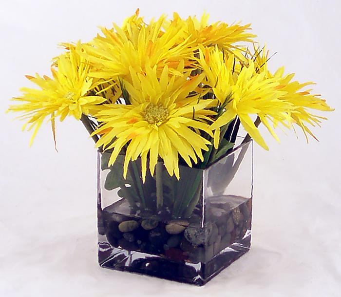 Gerber Daisy Yellow Sq