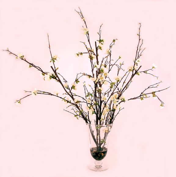 Quince Blossoms In Footed Vase