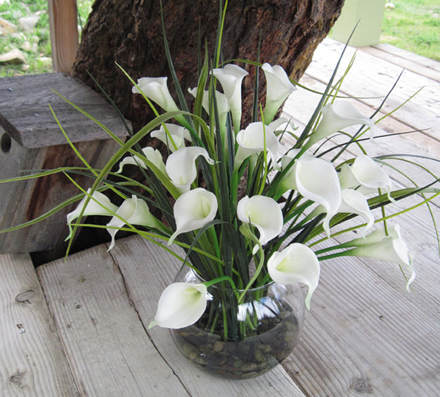 Calla Lilly Grand