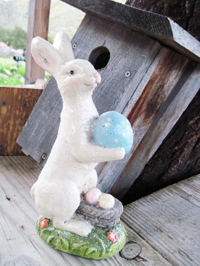 Bunny Small